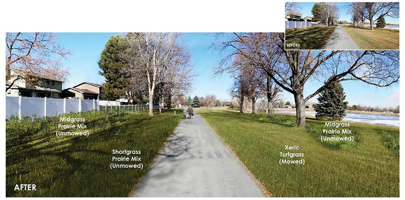 Images of how Bittersweet Park will look after renovations